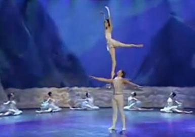 Chinese-state-circus-swan-lake